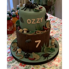 Amazing Cakes for Special Occasions