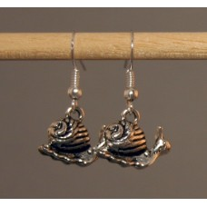 Pair of Snail Earrings