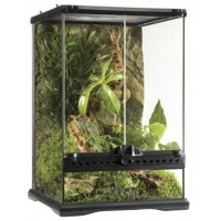 Exo Terra Glass Vivarium  30 x 30 x 45cm /  Collection Only (Used)