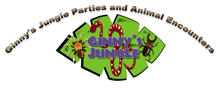Ginny's Jungle Parties and Encounters